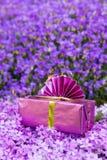 Rose actuel placé sur une mer des fleurs violettes Photo stock