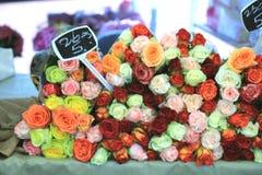 Rose ad un mercato del fiore Immagine Stock Libera da Diritti