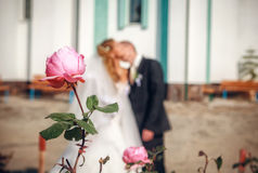 Rose against kissing newlyweds Royalty Free Stock Photography