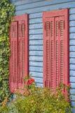 Rose Against Wooden Wall rouge photographie stock libre de droits