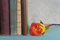 Rose al lado de los libros Fotografía de archivo libre de regalías