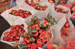 Rose all'ingrosso al mercato del fiore immagini stock libere da diritti