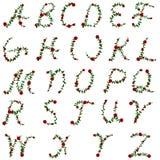 Rose alphabet Stock Images