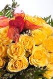 Rose amarilla Fotos de archivo libres de regalías
