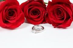 Rose & anello fotografie stock