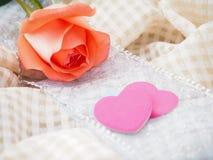 Rose anaranjada Imagen de archivo libre de regalías