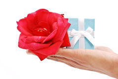 Rose And Gift Royalty Free Stock Image