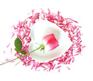 Free Rose And Heart Stock Photo - 6980970