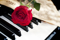 Rose And Piano Royalty Free Stock Photo