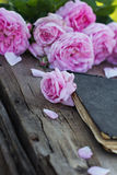 Rose and an antique book. Pink rose and an antique book lying on the old boards Royalty Free Stock Photos
