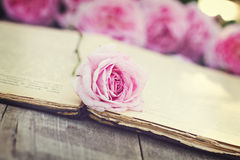 Rose and an antique book. Pink rose and an antique book lying on the old boards. Toned Photo Stock Images