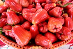 Rose apple Stock Photo