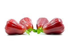 Rose apple Royalty Free Stock Photos
