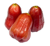 Rose apple Royalty Free Stock Image