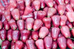 Rose Apple Fotos de archivo libres de regalías