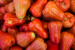 Rose Apple Stockbild