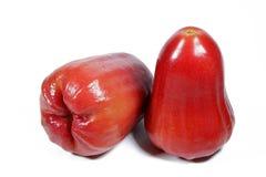 Rose Apple aqueuse Photos stock
