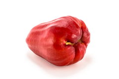 Rose apple. Beauty asian rose apple take photo on the white  background Royalty Free Stock Images