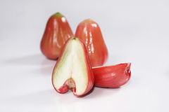 Rose-apple fruit Stock Photography