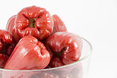 Rose apple isolated on the white Stock Images