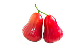 Rose apple isolted Royalty Free Stock Photos