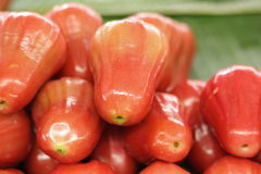 Rose apple in the market Royalty Free Stock Photo