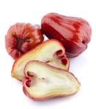 Rose Apple o Chomphu Imágenes de archivo libres de regalías