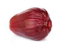 Rose Apple ou Chomphu Photo stock