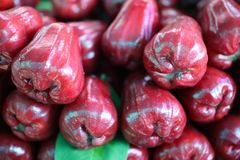 Rose apple, sweet flavor, wet for sale, red rose background.  stock image