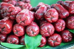 Rose apple, sweet flavor, wet for sale, red rose background.  stock photo