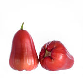Rose apple. On white background royalty free stock photography