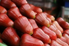 Rose Apples. Cham-Poo in Thai, piled up in a Thai fruit market Royalty Free Stock Photos