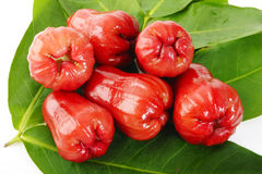 Rose apples Stock Images