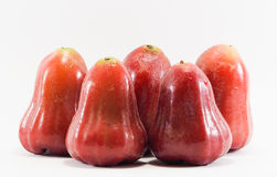 Rose apples isolated picture with white background. Four Rose apples isolated picture with white background royalty free stock images
