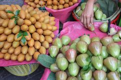 Rose apples and mangoes. On a market in thailand Stock Images