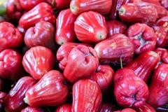 Rose Apples op de markt Stock Afbeelding
