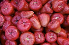 Rose apples on sale at market Royalty Free Stock Photos