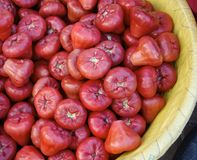 Rose apples on sale at market Royalty Free Stock Photo
