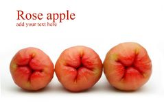 Rose apples on white background Royalty Free Stock Photos