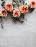 Rose arancio e rami decorativi su backgroun strutturato bianco Fotografia Stock Libera da Diritti