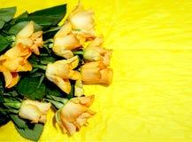 Rose arancio su fondo giallo, spazio della copia fotografie stock