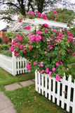 Rose Arbor stock image