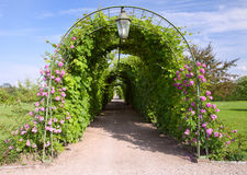Rose Arch In the Garden Royalty Free Stock Photography