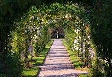 Rose Arch. In the Garden Stock Photos