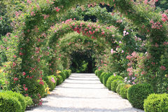 Rose Arch In the Garden. At Spring Time Stock Images