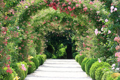 Free Rose Arch In The Garden Royalty Free Stock Photos - 18240518