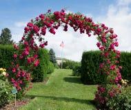 Rose Archway images libres de droits