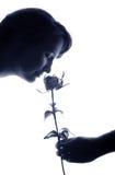 rose aromat Obraz Stock