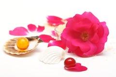 Rose aromatherapy Stock Image