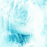 Rose art with fade abstract texture.  Royalty Free Stock Photography